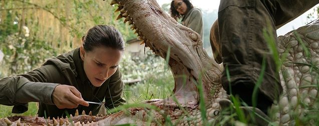 annihilation-photo-natalie-portman-1007565-large.jpg